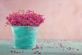 ᐈ <b>Цветы бирюзового</b> цвета фото, картинка <b>цветы бирюза</b> ...