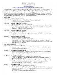 sample teaching resumes cipanewsletter professional teaching resume doc 8201076 example resume