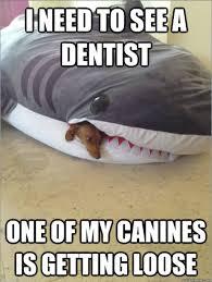 Concerned-Shark.png via Relatably.com