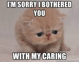 I'm sorry i bothered you with my caring - Super Sad Cat | Meme ... via Relatably.com