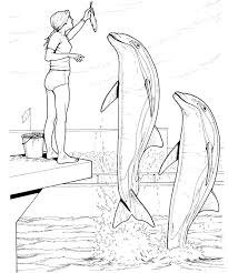 Small Picture Dolphin Coloring Pages olegandreevme
