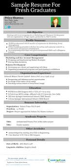 Excellent Resume Sample Format
