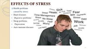 modern life and stress essay conclusion   homework for you  modern life and stress essay conclusion   image