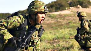 Image result for japanese army 2016