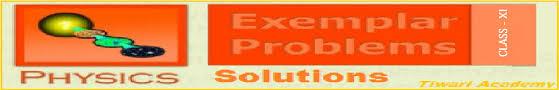 ncert exemplar problems class physics in pdf format