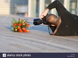 Image result for photographer at work
