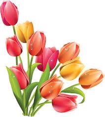 """Résultat de recherche d'images pour """"fleurs de printemps"""""""