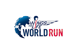 Android <b>Power</b> Management Settings - Wings for Life World Run 2020