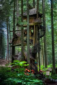 Brilliant Tree Houses Have A Singlestory House If You Can Throughout Inspiration