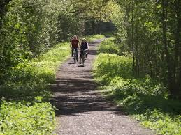 Image result for free images of cycling in surrey
