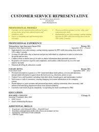 simple professional profile resume examples resume innovations example of profile for resume resume profile examples resume template