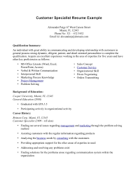 Resume Examples  Example of a Resume for a Job Summary with     Resume Examples  Customer Service Resume Example With Qualifications Summary And Background Of Education In University