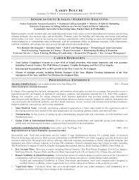 s executive resumes s executive resume account management enterprise s executive resume resume account manager s s resume for freshers s executive resume sample