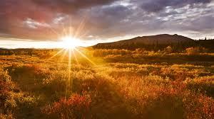 Resultado de imagem para beautiful psalms