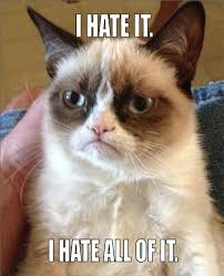 Disgusting | Grumpy Cat | Know Your Meme via Relatably.com