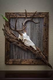 1000 ideas about deer mounts on pinterest barn board wall barn boards