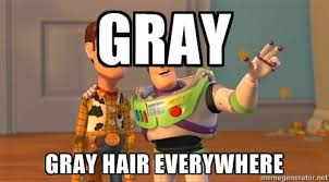 Gray Gray hair everywhere - Toy Story Meme | Meme Generator via Relatably.com