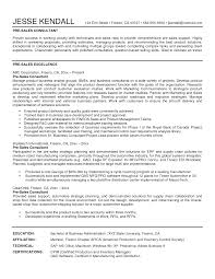 it s executive resume png oracle s consultant resume