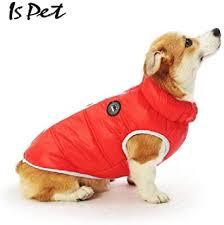 WenZhouHuangHuNiaoShangMaoYouXianGongSi fashionable <b>pet</b> ...