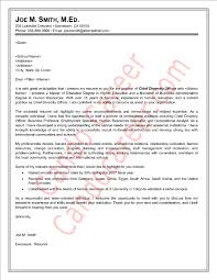 chief diversity officer cover letter samplechief diversity officer cover letter sample