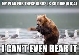 Memes Vault Bear Memes via Relatably.com