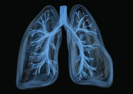 Can <b>vaping</b> damage your lungs? What we do (and don't) know ...