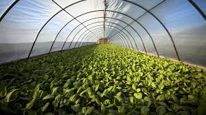 new agriculture technologies net time for another agriculture revolution
