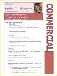 cv directeur commercial lettre de preavis cv directeur commercial preview cv amina aissa 1 jpg