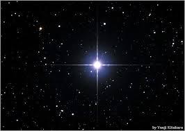 Image result for la estrella