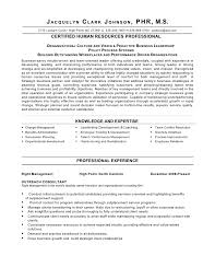 Resume Sample     International Human Resource Executive resume     happytom co Human Resources Manager Resume Examples Human Resources Resume