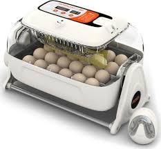 <b>Инкубаторы</b> для яиц купить в интернет-магазине OZON.ru