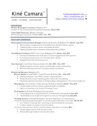 resume professional profile examples immigration paralegal resume resume professional profile examples professional profile resume professional profile resume full size