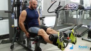 <b>Разгибание ног сидя</b> в тренажере: изолирующие упражнения ...