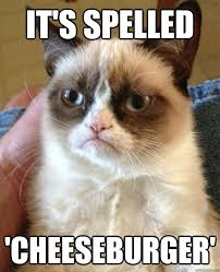 IT'S SPELLED 'CHEESEBURGER' - Grumpy Cat is so sick of this shit ... via Relatably.com