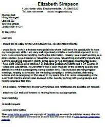 Software Engineer Cover Letter Example happytom co