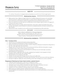 template for functional resume cipanewsletter cover letter sample functional resume format sample functional