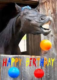 Image result for birthday horse picture