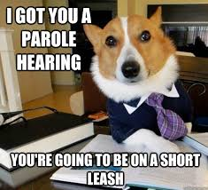 Lawyer Dog memes | quickmeme via Relatably.com