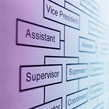 what is a job specification job classification is used to create parity across positions on an organizational chart