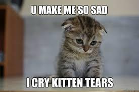 Memes Vault Crying Cat Memes via Relatably.com