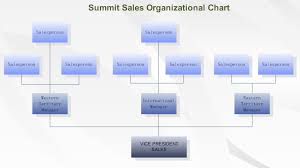 understand organizational chart and how to draw an organizational    sales orgnizational chart