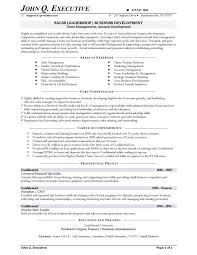 Resume Examples  Business Developer Resume Example With Areas Of Expertise In Management And Core Competencies     Rufoot Resumes  Esay  and Templates