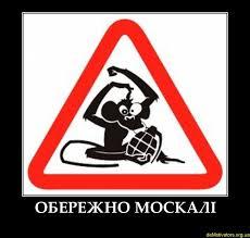 Путину нужен беспорядок в Украине, а не русский язык и децентрализация - Томенко - Цензор.НЕТ 1281