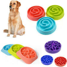<b>Slow</b> Eating <b>Dog Bowl</b> for sale   eBay