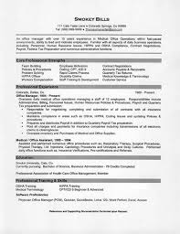 Director Of Support Services Resume   Sales   Support   Lewesmr Mr  Resume