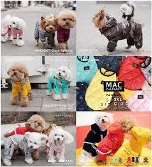 <b>Дог</b> Бутик RICHDOGWORLD | Дизайнерская одежда для <b>собак</b> ...