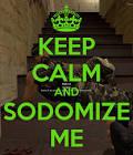 sodomize