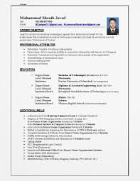 examples of resumes accounting resume format writer nyc best accounting resume format resume writer nyc best sample resume pertaining to 79 astonishing resume writing jobs