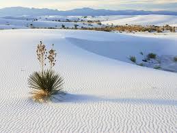 Kết quả hình ảnh cho cát trắng quảng bình