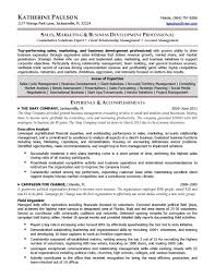 resume samples elite resume writing business development director resume sample provided by elite resume writing services